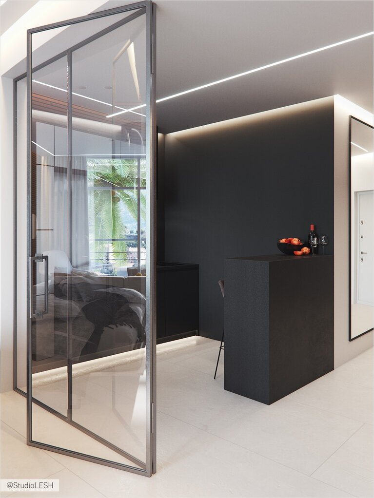 Contrast black minimalist kitchen with glass partition